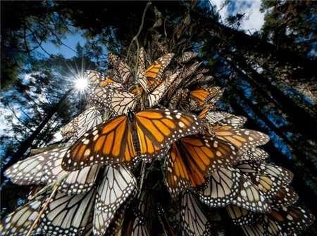 Сто чудес света от National Geographic