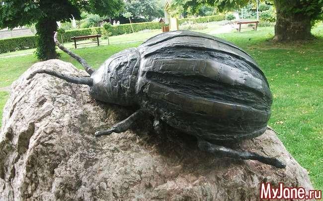 Колорадський жук: війна, яку людство безславно програв...
