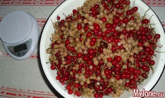 Желе з червоної (білої) смородини. Швидко і смачно