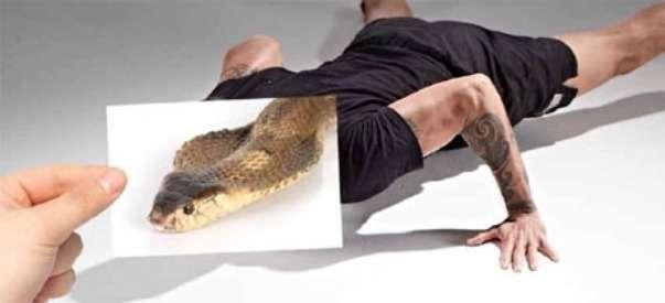 Фітнес ZUU: хороша фізична форма, імітуючи тварин